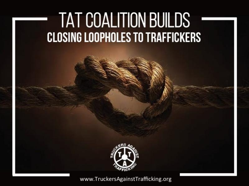 TAT Coalition Builds